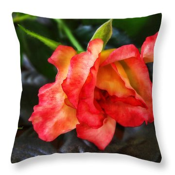 Throw Pillow featuring the photograph Elegance by Joan Bertucci