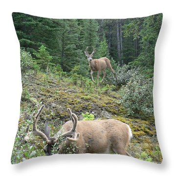 Elegant Elk Throw Pillow