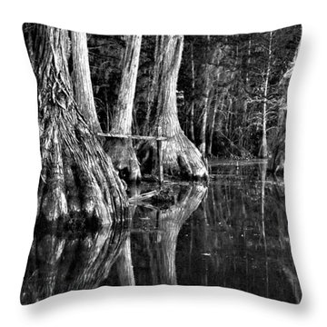 Throw Pillow featuring the photograph Elephant Feet by Dan Wells