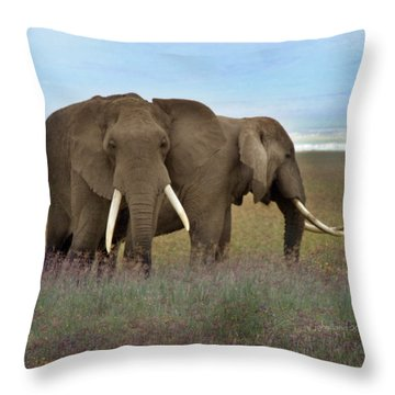 Elephants Of The Crater Throw Pillow by Joseph G Holland