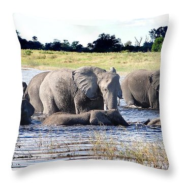 Elephants Playing In The River Throw Pillow