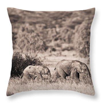 Elephants Walking In A Row Samburu Kenya Throw Pillow by David DuChemin