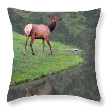 Elk Alertness Throw Pillow by Alan Lenk