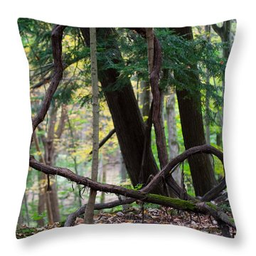 Embrace Throw Pillow by Barbara McMahon