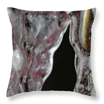 Encased Throw Pillow by Lisa Knechtel