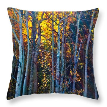 Enchanted Aspen Throw Pillow