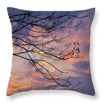 Enchanted Evening Throw Pillow by Rachel Cohen