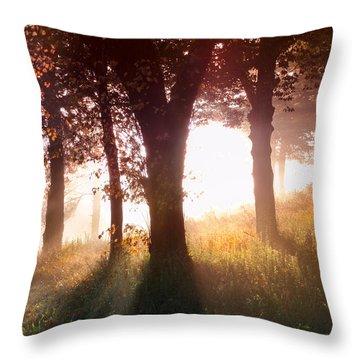 Enchanted Meadow Throw Pillow by Debra and Dave Vanderlaan