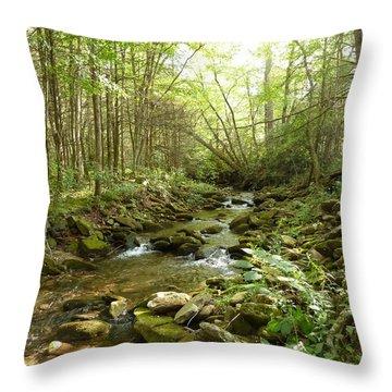Enchanted Stream Throw Pillow