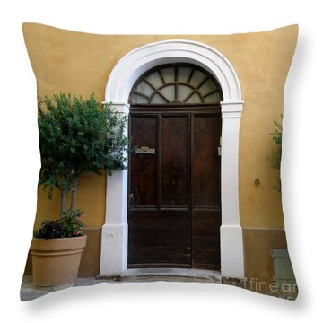 Enchanting Door Throw Pillow by Lainie Wrightson