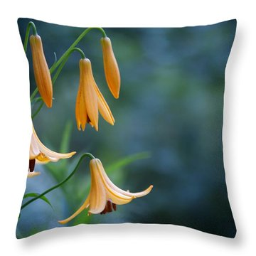 End Of June Two Throw Pillow by Nathan Larson