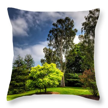English Countryside  Throw Pillow by Adrian Evans