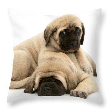 English Mastiff Puppies Throw Pillow by Jane Burton