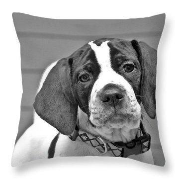 English Pointer Puppy Black And White Throw Pillow