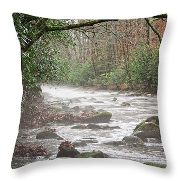 Enhanced Fog On The River Throw Pillow