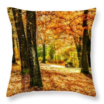 enjoy the autmn II Throw Pillow by Hannes Cmarits