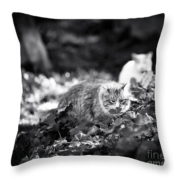 Enjoy The Little Things Throw Pillow by John Rizzuto