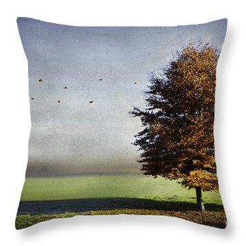 Enjoying The Autumn Sun Throw Pillow by Hannes Cmarits