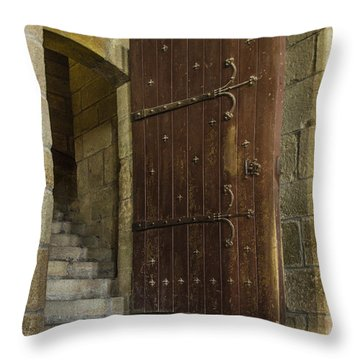 Throw Pillow featuring the photograph Entrance by Marta Cavazos-Hernandez