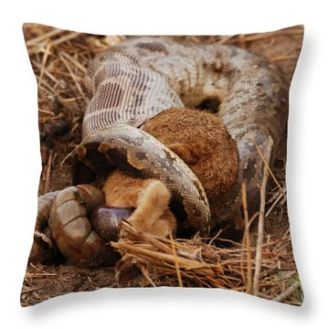 Throw Pillow featuring the photograph Entrapped by Fotosas Photography