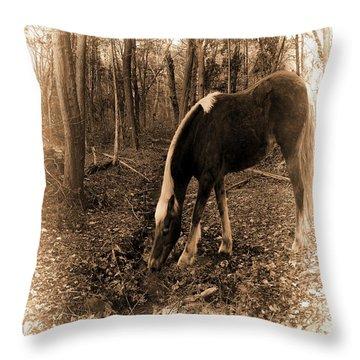 Equine Solitude Throw Pillow