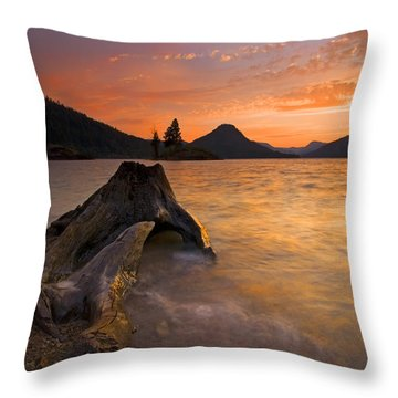 Eroded Away Throw Pillow by Mike  Dawson