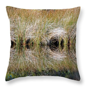 Escape Hatches Throw Pillow