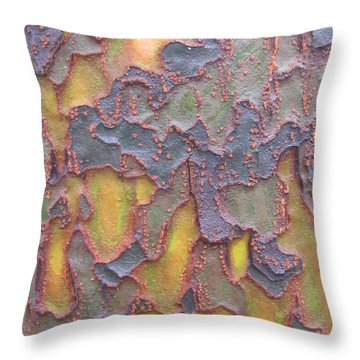 Throw Pillow featuring the photograph Established Photography by Tina Marie