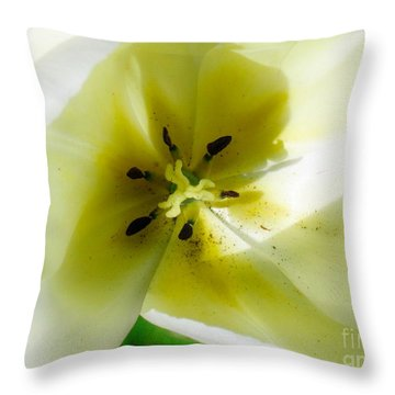 Throw Pillow featuring the photograph Ethereal by Rory Sagner