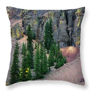 Eureka Throw Pillow