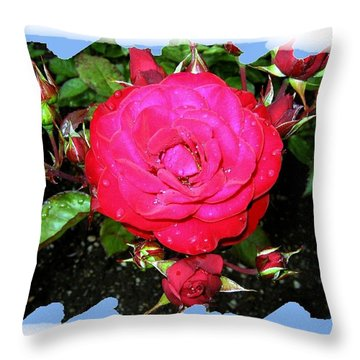 Europeana Roses And Raindrops Throw Pillow by Will Borden