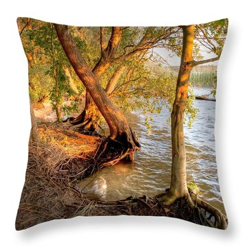 Evening At The Lake Throw Pillow by Heiko Koehrer-Wagner