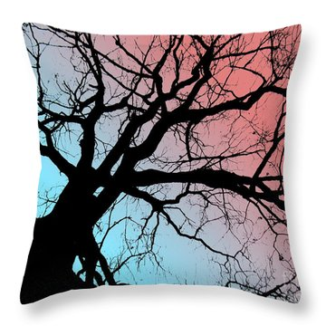 Throw Pillow featuring the photograph Evening Breaks by Amy Sorrell