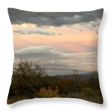 Throw Pillow featuring the photograph Evening In Tucson by Kume Bryant