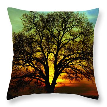 Evening Palette Throw Pillow by Benanne Stiens