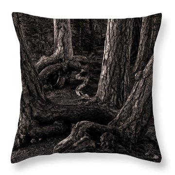 Evening Pines Throw Pillow