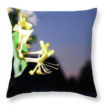 Evening Sonata. Perfoliata Throw Pillow