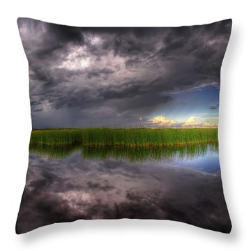 Everglades Reflection Throw Pillow
