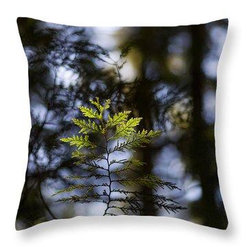 Evergreen Light Throw Pillow by Mike Reid