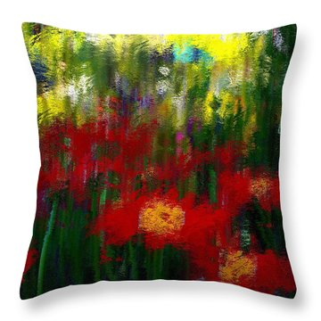 Evoke Throw Pillow