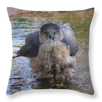 Excuse Me But I Am Bathing Here. Throw Pillow