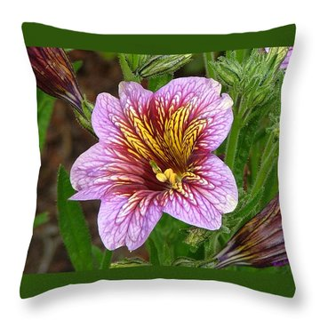 Throw Pillow featuring the photograph Exploding Beauty by Wendy McKennon