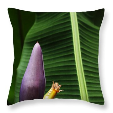 Exploring Light In Nature Throw Pillow