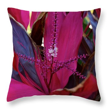 Explosion Throw Pillow by Joseph Yarbrough