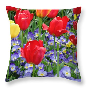 Exultation Throw Pillow by Rory Sagner