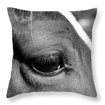 Eye Of The Horse Black And White Throw Pillow by Sandi OReilly