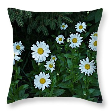 Throw Pillow featuring the photograph Eyes by Joseph Yarbrough