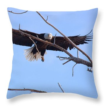 Throw Pillow featuring the photograph Eyes On The Prize by Jim Garrison