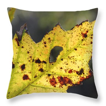 Face Of A Leaf Throw Pillow