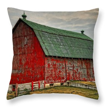 Fading Throw Pillow by Tim Wilson